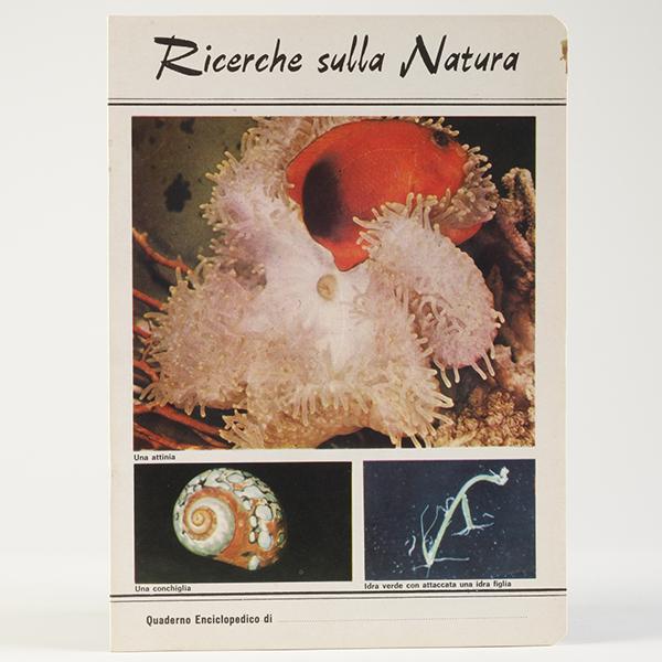 ricerche-sulla-natura-vita-nel-mare-600_600-
