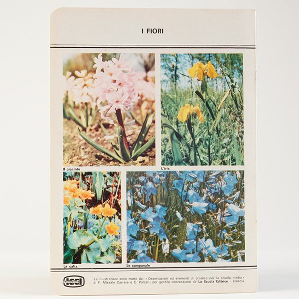 ricerche_fiori_600_600_2