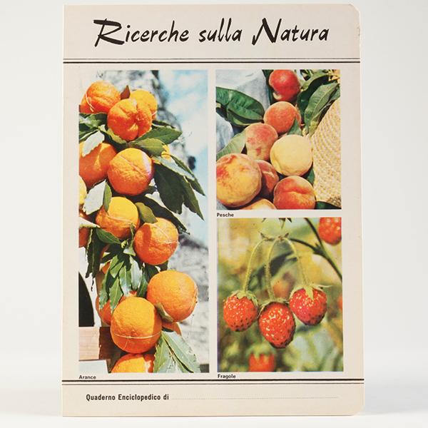 ricerche_frutti_2_600_600